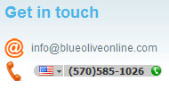 Phone number highlighted by Skype as shown in Internet Explorer.