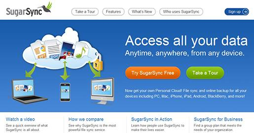 SugarSync is an online backup, file sync, and sharing service. With SugarSync you get secure cloud storage for all your files — documents, music, photos, and videos. Provides 5GB of Free storage.