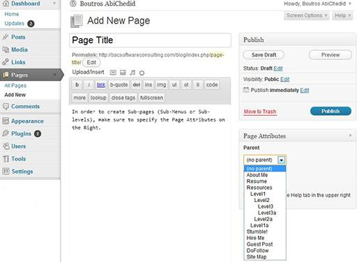 WordPress Admin panel: Adding a new page and specifying its level.