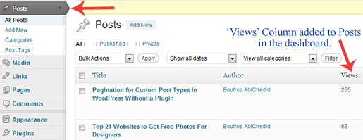 Views Column for the Posts tab as it shows in the WordPress dashboard.