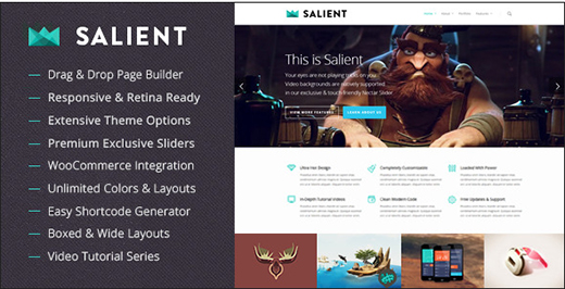 Salient - Responsive Multi-Purpose Theme.