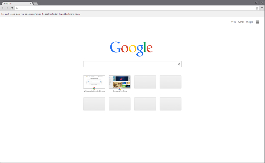 Google Chrome Browser.