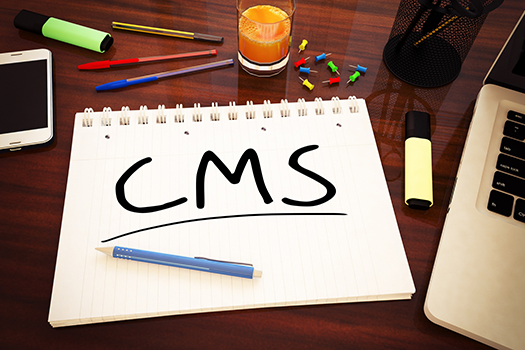 5 Advantages of Using a CMS to Design your Intranet.