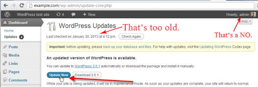Not Updating WordPress